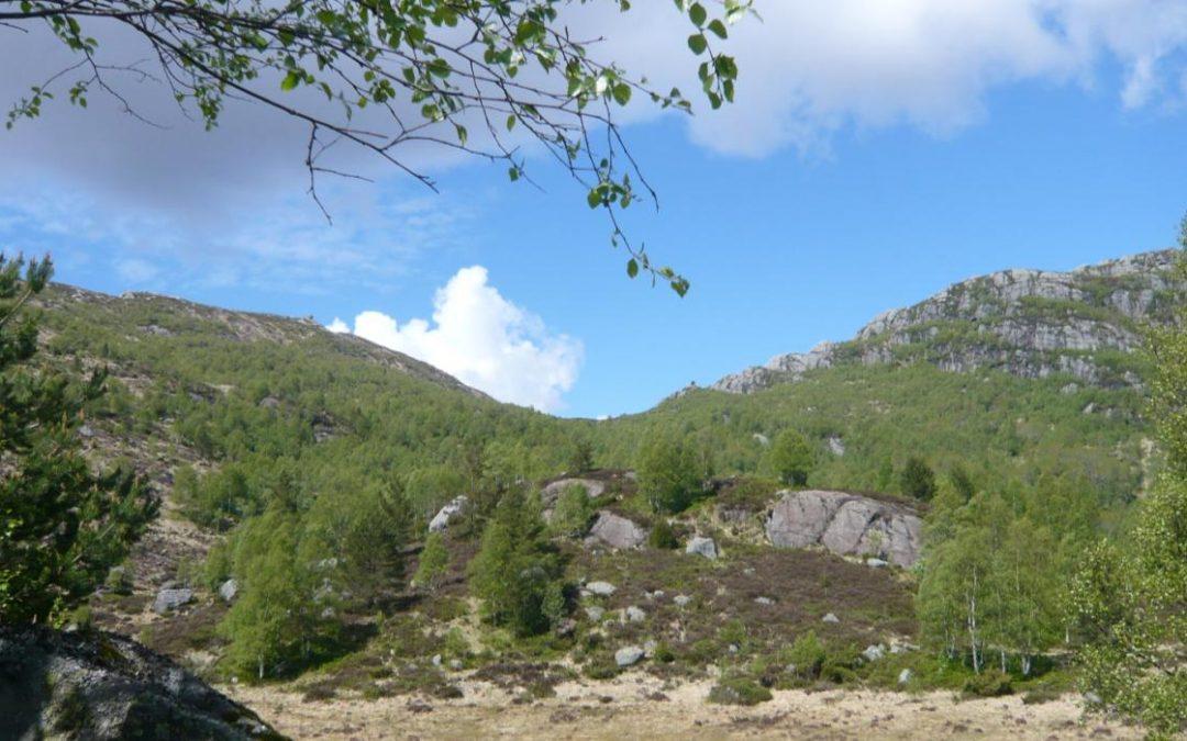Dagstur til Ørsdalen